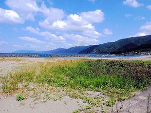 Kamakiri