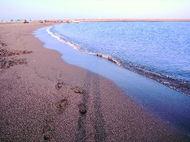 Beachshdow